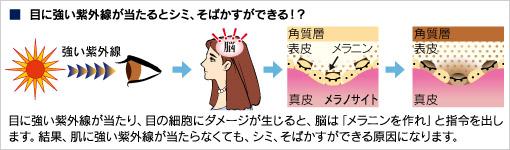 目に強い紫外線が当たるとシミ、そばかすができる